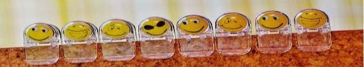 Taller on line intel·ligència emocional enfocada a resultats de l'empresa